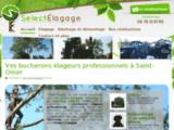 Elagage, abattage et démontage d'arbres à Hazebrouck.