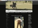 Sellerie Guidotti Laetitia