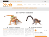 Marketing Digital, Agence Web et Mobile Offshore Madagascar- SHAFT
