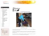 Shiatsu pour chevaux et cavaliers en Franche-Comté