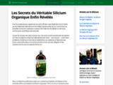 Tout savoir sur le silicium organique