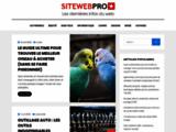 Création de site Internet à Genève - Agence web Busfront à Vernier