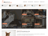 Sosweetcats.com