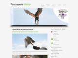 Fauconnerie Merlyn - Spectacles de Fauconnerie