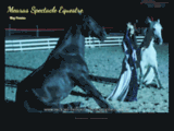 Mearas Spectacle Equestre