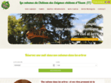 Sur un arbre perché: cabanes dans les arbres en Charente-Maritime - Dormir dans une cabane