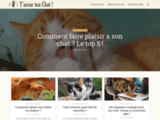 Tassurtonchat.com