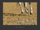 Cavalimage, 1er magazine en ligne d'art équestre