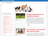 Soins chiens Brabant Wallon