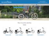 Conception de tricycles pour les personnes adultes