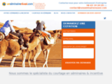 Un Seminaire Reussi - Organisation Devis Seminaire France | Corse | Portugal |  Maroc | Espagne |  Malte - Accueil Seminaire et Incentives ~
