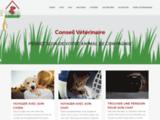 Soin des animaux de compagnie | Conseil Vétérinair.fr