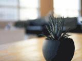 Video Pub – Creation de videos publicitaires