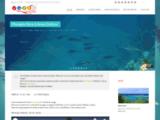 Vidéo Antilles