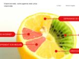 Vitamine-web  Agence de création site internet - gard - goûtez au succés du web