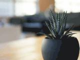 VuVendu: Annonces Maroc, Immobilier, Voiture, Moto, Emploi, Location de Vacances