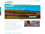 Banque d'images - Wallis