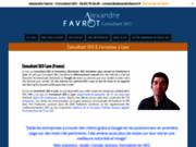 Alexandre Favrot, votre consultant webmarketing freelance sur Lyon