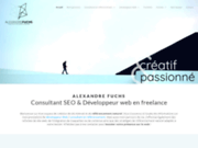 Alexandre Fuchs, Webmaster en Freelance