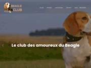 Tout savoir sur le Beagle