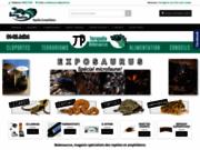 Tortue hermann - Bebesaurus