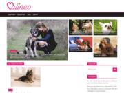 Eduquer votre chien avec Calineo