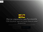 CDR Gauthier - Concessionnaire quad 38
