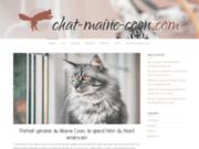 Tout sur le chat Maine Coon