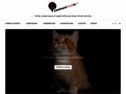 Des conseils et des astuces pour votre chat