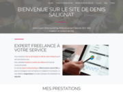 Denis SALIGNAT Expert freelance en webmarketing
