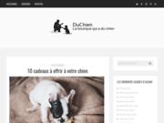 Accessoires pour chien : test des meilleures marques