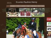 Vente de chevaux de sport, de poney de sport, spécialiste du poney cso