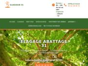 Élagage et abattage d'arbre en Haute Garonne