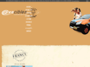 Axecibles - Agence de création de site web
