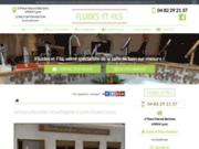 Plombier-chauffagiste Lyon, Fluides et Fils