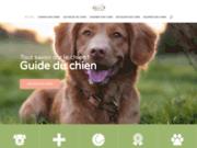 Tout savoir sur les soins, le bien-être et l'éducation de son chien
