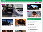 Inmybuzz portail d'actualité décalée d'infos buzz et de news insolites