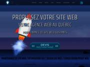 Lafirme Quebec agence de maintenance web