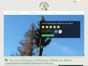 Mathieu Elagage - élagage et abattage d'arbres à Maisonsgoutte
