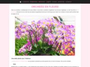 Conseils pour avoir des orchidées en fleurs