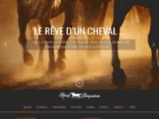 La Briqueterie, accueil pour chevaux