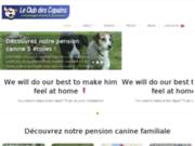 Votre pension canine en haute savoie