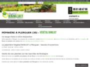 Vente de fleurs et plantes à Plerguer en Bretagne