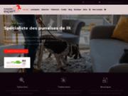 Punaises Expert, une société spécialisée dans la lutte contre les punaises de lit