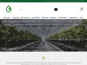 Quelcbdchoisir.fr: Comparez et trouvez les meilleures Huiles De CBD