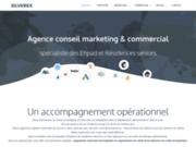 Agence de conseil commercial et marketing