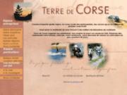 Terre de corse - randonnées quad Corse (20) Ajaccio