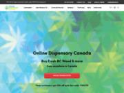 Livraison de cannabis légal en Belgique