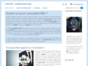 Theopat consultant Seo