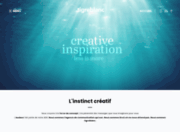 Agence web Lille - Tigre Blanc